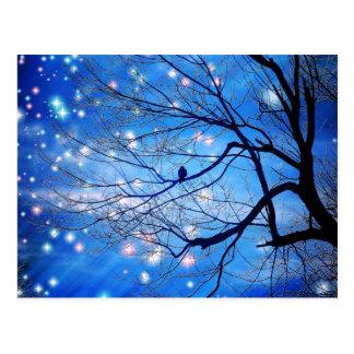 Solamente con las estrellas postal