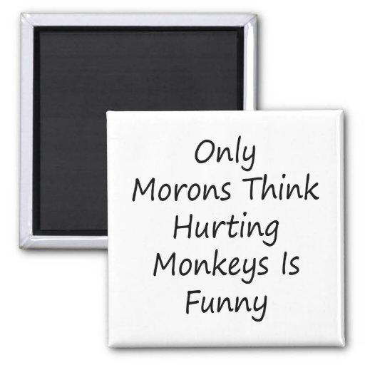 Solamente los Imbéciles piensan que dañando monos  Imán De Nevera