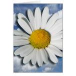 Solamente un flor de la margarita + su texto y tarjeta de felicitación