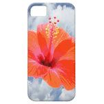 Solamente un flor del hibisco + su texto y ideas iPhone 5 protector