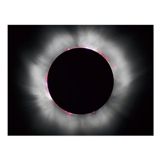 Solar Eclipse, 1999 Postcard
