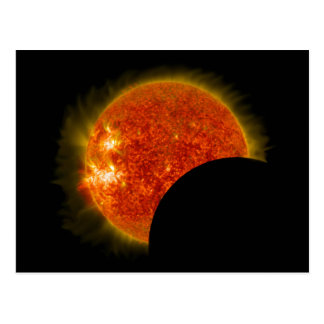 Solar Eclipse in Progress Postcard