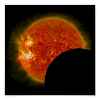 Solar Eclipse in Progress Poster