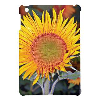 Solar energy of the sunflower iPad mini cases