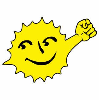 Solar Power Cutout