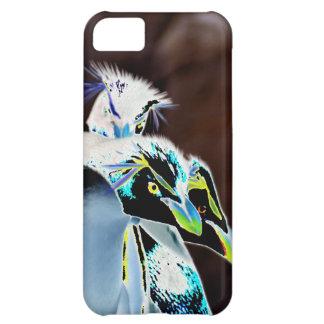 Solarized Rockhopper Penguins iPhone 5C Case