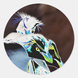 Solarized Rockhopper Penguins Classic Round Sticker