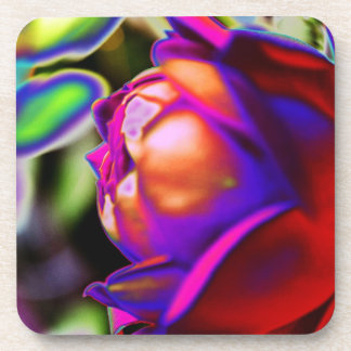 Solarized Rose by Shirley Taylor Beverage Coaster