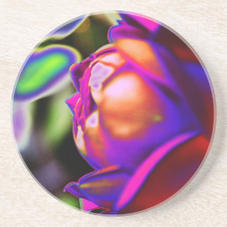Solarized Rose by Shirley Taylor Coaster