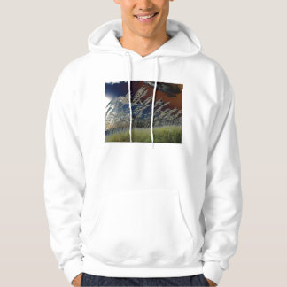 Solarized sea oats picture on florida beach hoodie