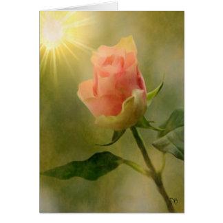 Solas tarjetas color de rosa rosadas