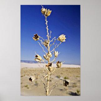 Sole survivor  flowers print