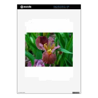 Soledad Calcomanía Para iPad 2