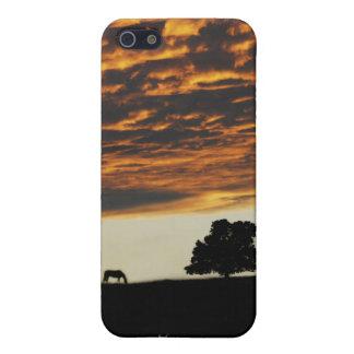 Soledad de la puesta del sol iPhone 5 carcasa