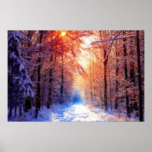 Soledad del invierno póster