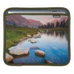 Soledad del lago fundas para iPads