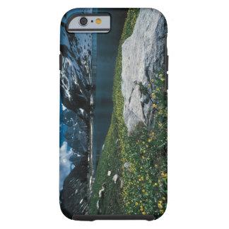 Soledad del lago, parque nacional magnífico de funda resistente iPhone 6