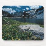 Soledad del lago, parque nacional magnífico de Tet Alfombrillas De Ratón