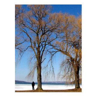 Soledad - lago Cayuga Postales