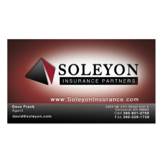 Soleyon 2 business cards
