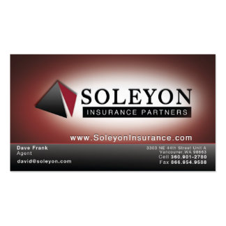 Soleyon Business Card Template