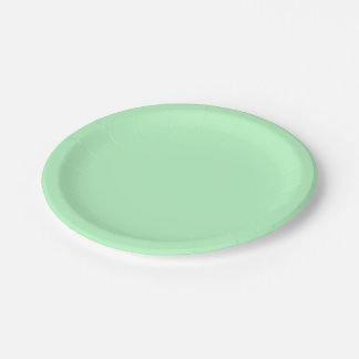Solid Color: Mint Paper Plate