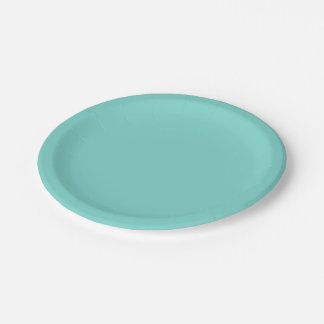 Solid Color: Turquoise Aqua Paper Plate