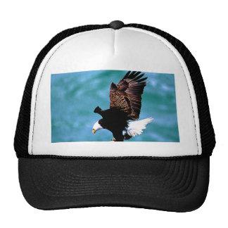 Solid Landing bald eagle bird predator Trucker Hat