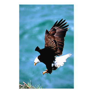 Solid Landing bald eagle bird predator Customized Stationery