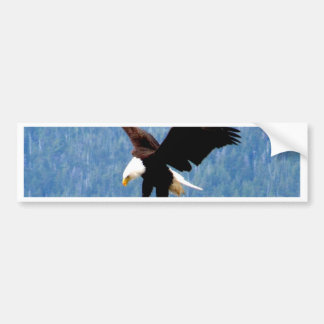 Solid landing Bald Eagle Bumper Sticker