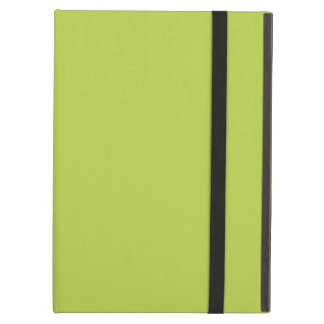 Solid Tender Shoots Green iPad Air Case