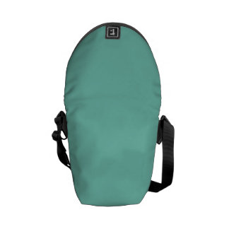 Solid Turquoise Courier Bags