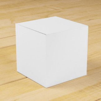 Solid White Favor Box