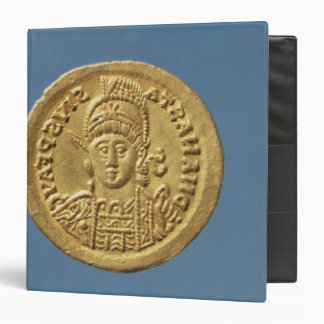 Solidus  minted by Theodoric I Vinyl Binders
