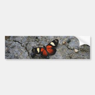 Solitario de la mariposa en piedra pegatina para auto