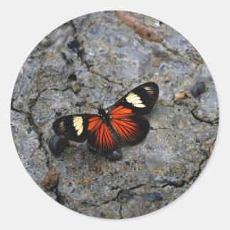 Solitario de la mariposa en piedra pegatina redonda