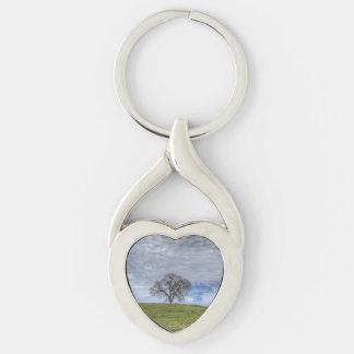 Solitario del roble llavero plateado en forma de corazón