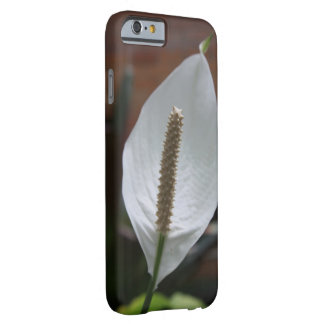 Solitary Barely There iPhone 6 Case