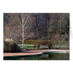 Solitary Bench by Pond Note Card