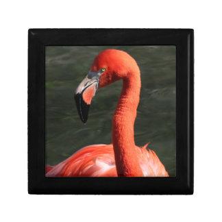 Solitary Pink Flamingo Gift Box