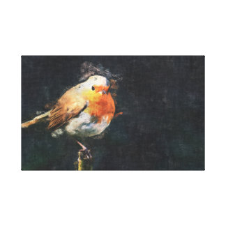 Solitary Robin Canvas Print