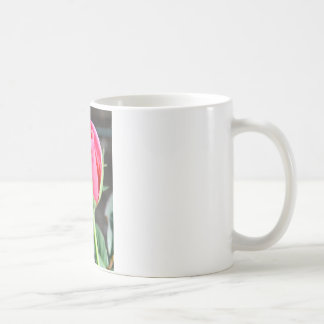 Solitary Rose 2 Coffee Mug
