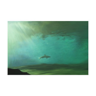 """Solitary Shark"" by Jamie Scott Wilson Stretched Canvas Prints"