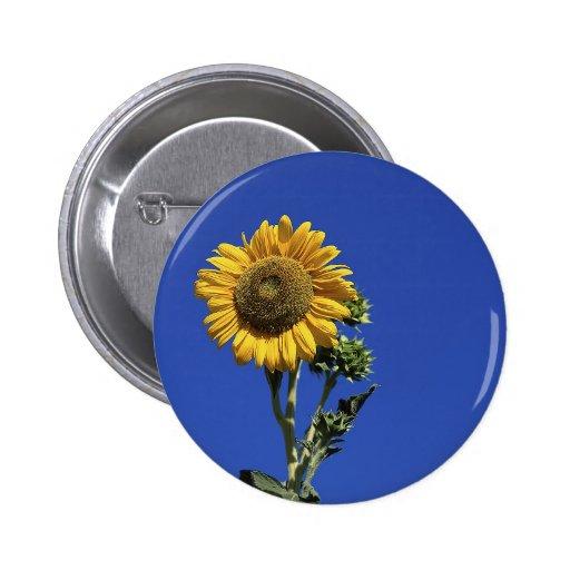 Solitary Sunflower Pins