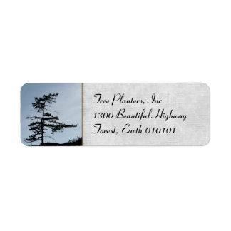 Solitary Survivor Tree Label