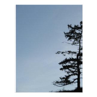 Solitary Survivor Tree Letterhead