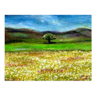 SOLITARY TREE IN THE YELLOW FLOWER FIELD,TUSCANY POSTCARD