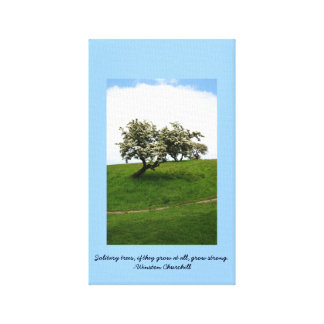 Solitary Trees Canvas Prints