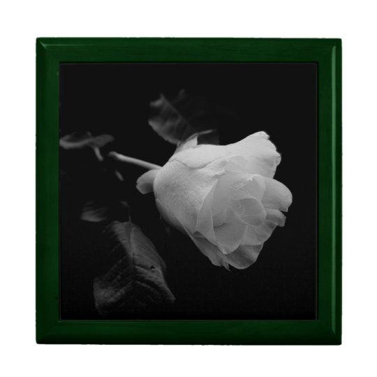 Solitary White Long Stem Rose Gift Box