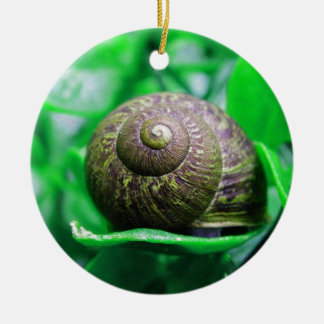 Solitude (aka 'Green Snail') Ceramic Ornament